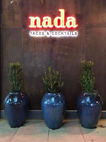 7_Nada_Tacos_&_Cocktails_Tequila_Bar_Indianapolis