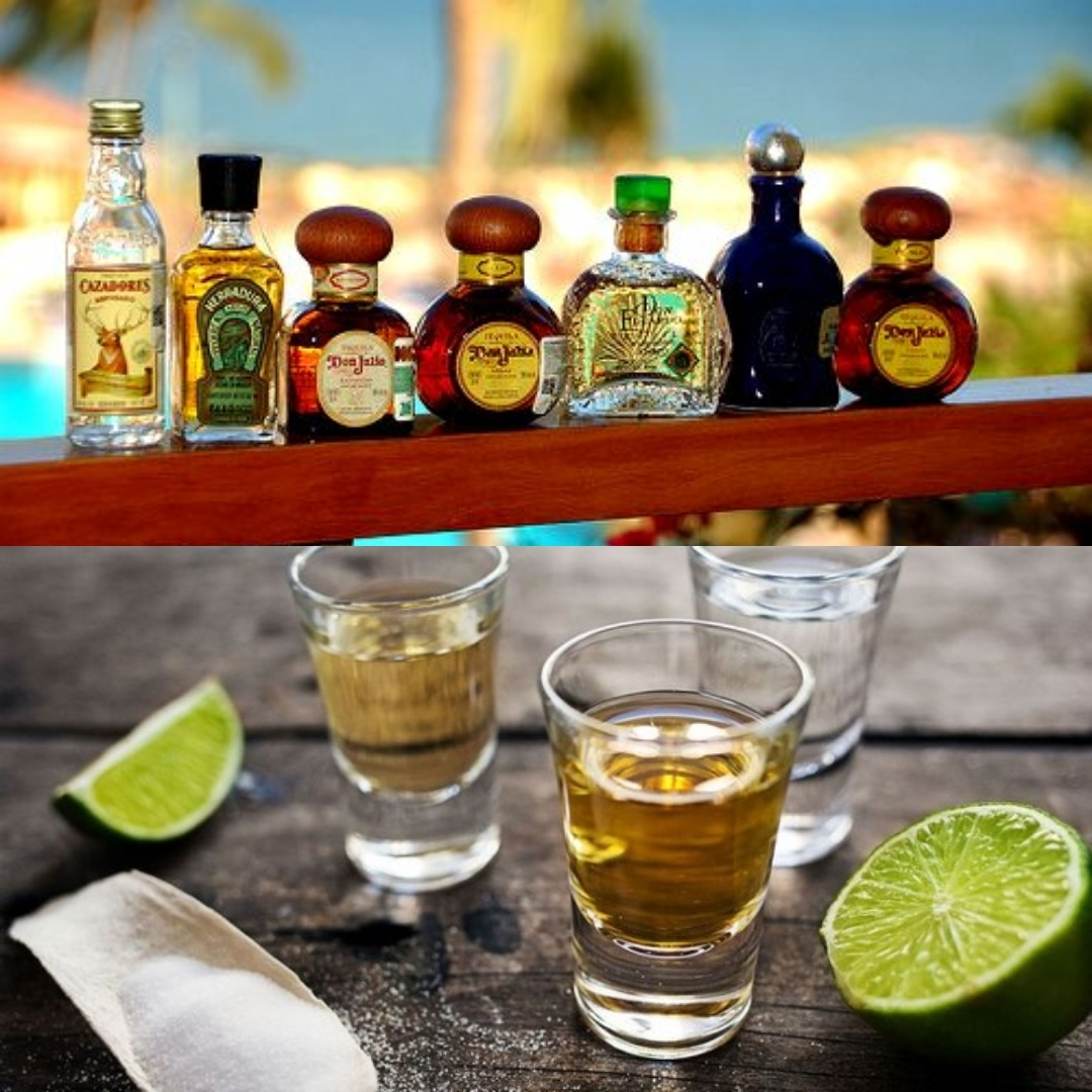 Fun Facts about the Best Tequila Distilleries in Indiana and in Nearby Areas