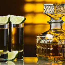 2018 Winter Tequila Recap: Denver's Top Brands